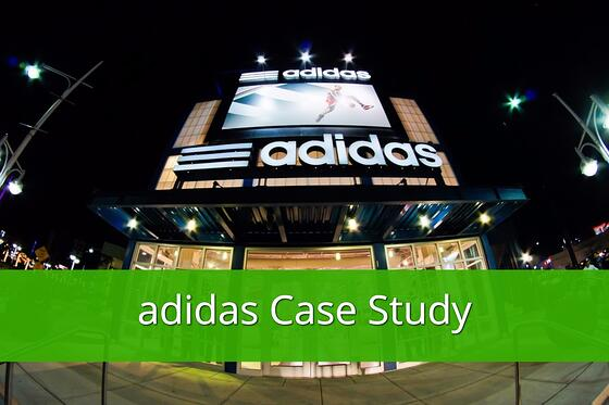 adidas case study data feed optimization